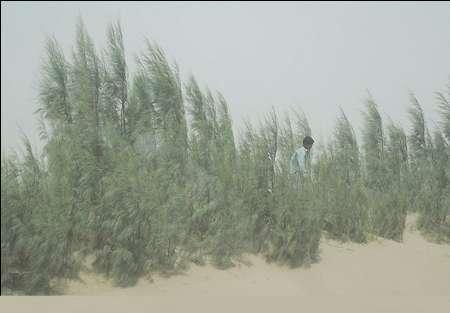 آغاز بادهای ۱۲۰ روزه معروف سیستان و گردو غبار و آلودگی هوا